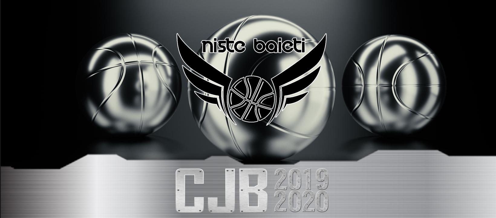 cover-nistebaieti